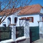 Casa-memoriala-Lucian-Blaga-20101111154725