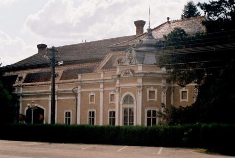 Castelul-Dietrich-Sukowsky-Pancota-20101110143040