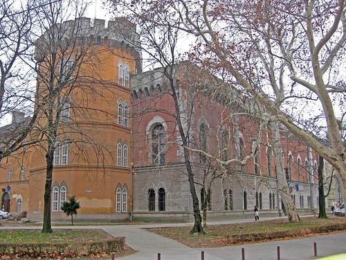 Castelul-Huniade-din-Timisoara