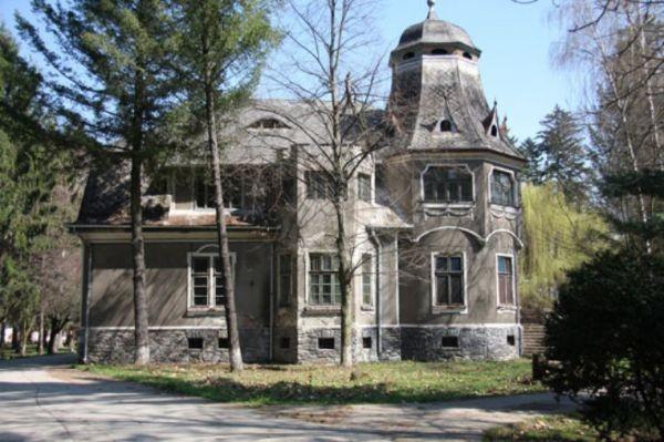 Castelul-Pogany-Paclisa-20101216101337