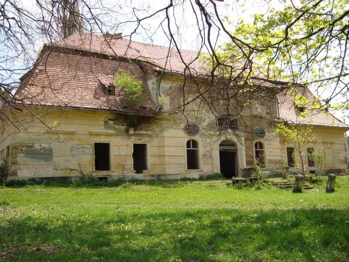 Castelul-Teleki-din-Comlod-20110116104827
