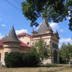 Castelul_de_la_Sofronea,_jud_Arad2