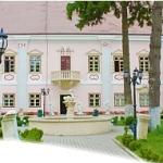 Palatul-Magna-Curia