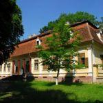 castelul-Miko-din-Olteni-1