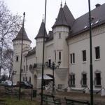 castelul-carei