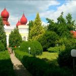 castelul-contelui-bethlen-din-arcalia-563