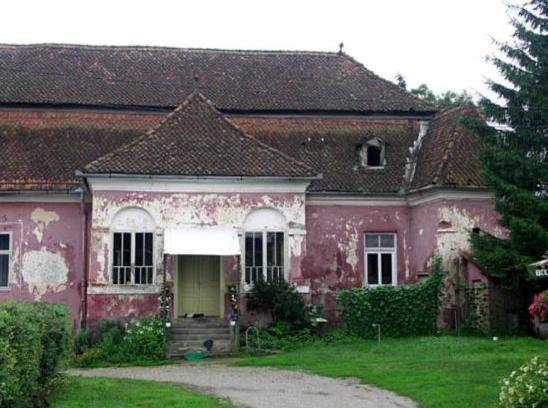 castelul-nemes-haghig-2