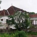 poza-castelul-kalnoky-din-miclosoara-20110720132838