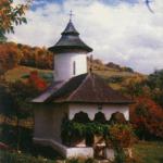 117513_manastirea-carnu