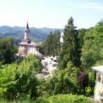 117923_manastirea-rohia-sfanta-ana