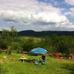 Cazare-la-Vila-Victoria-din-Vălenii-de-Munte-9