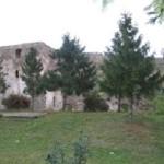 Curtea-Domneasca-Cotnari-20110816112104