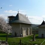 Manastirea-Dobrovat-20110310105856