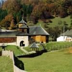Manastirea-Lepsa-20110112153628