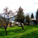 Manastirea-Valea-Neagra-20110111150424