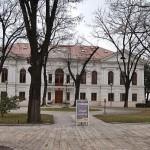 Palatul-Familiei-Ghica-din-Caciulati-20110225103211