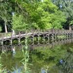Palatul-Stirbei-de-la-Buftea-20110225104218