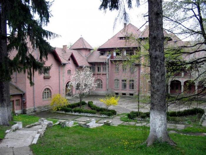 Palatul-Stirbei-din-Darmanesti-20110107161659