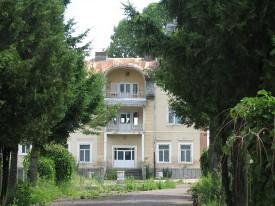 Palatul_Sturdza_de_la_Cozmeşti10-275x206
