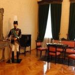 Palatul_domnului_Alexandru_Ioan_Cuza,_din_Ruginoasa