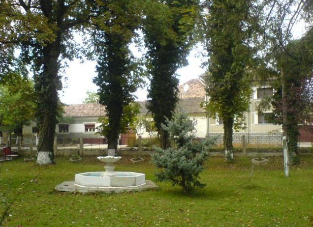 Statiunea-Baile-Tinca-20110503135059