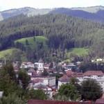 Statiunea-Campulung-Moldovenesc-20110222150356