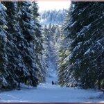 ctg_stana de vale iarna