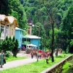 excursii-excursie-din-timisoara-statiunea-balneoclimaterica-vile-moneasa-arad-2b-1024x347