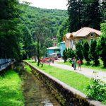 excursii-excursie-din-timisoara-statiunea-balneoclimaterica-vile-moneasa-arad-orig-b