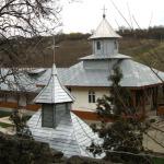 manastirea-brazi-(23)