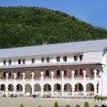 manastirea-crisan-vaca-(3)