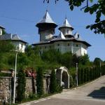 manastirea-crisan-vaca-(8)