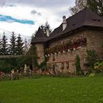 manastirea-moldovita-4