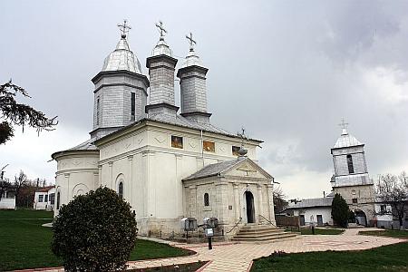 foto Sorin Comanescu
