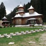 manastirea-sihastria-raraului-2_264662d8a9986a