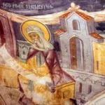 manastirea-stelea-8