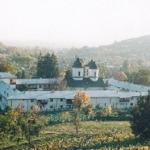 manastirea-viforata-1