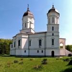 poza-manastirea-celic-dere-10