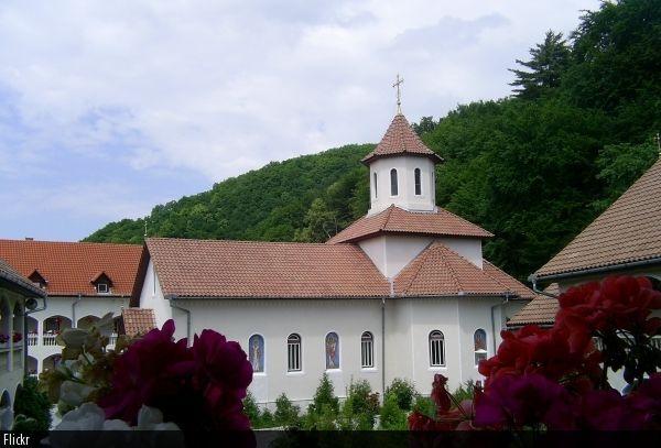 poza-manastirea sf. dimitire