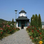 schitul-ostrov-calimanesti