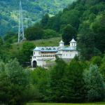 tarnosirea-bisericii-manastirii-boia